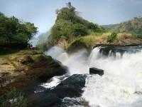 10 Days Tour To Murchison, Queen Elizabeth, Kibale, Bwindi & Lake Bunyonyi