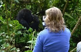 7-day Wildlife & Gorillas